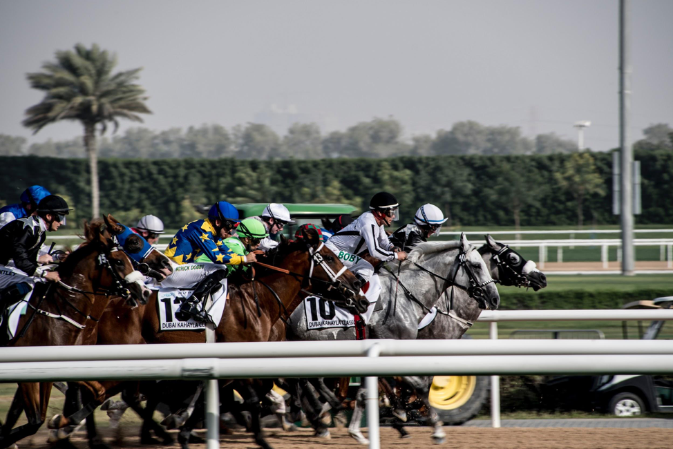 The Triple Crown Jewel: Becoming A Sharper Belmont Stakes Bettor