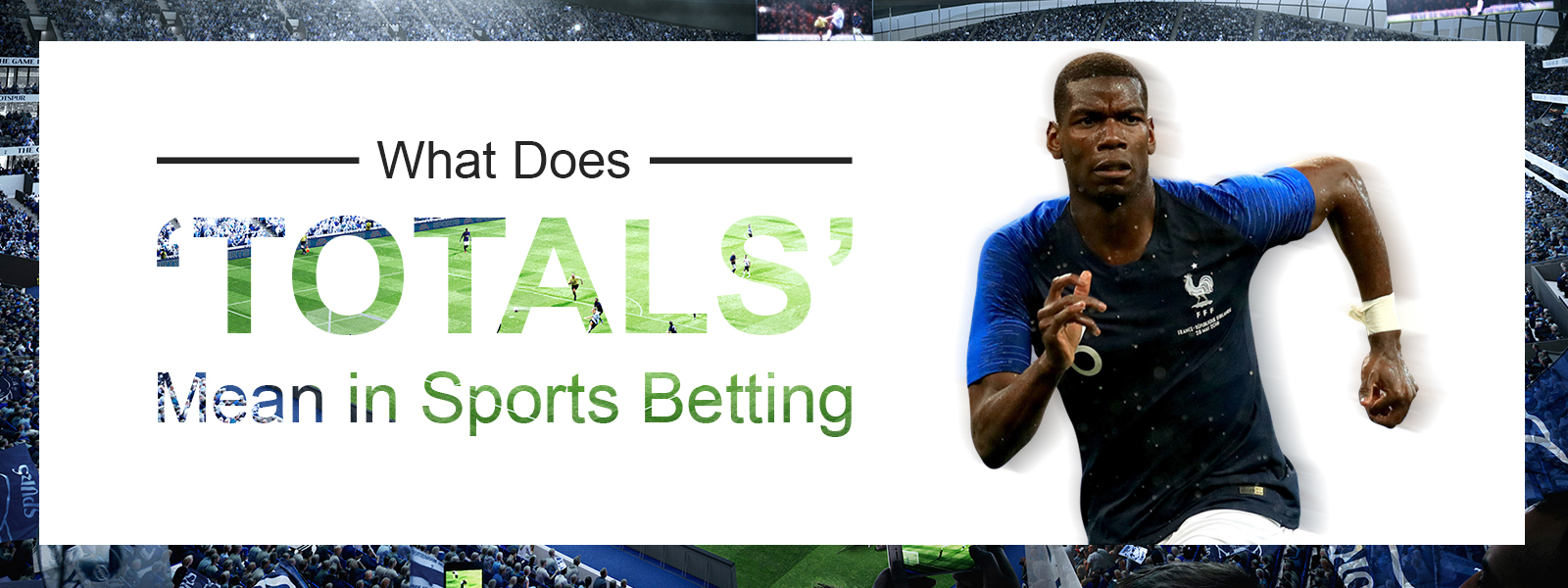 What Does Totals Mean in Sports Betting