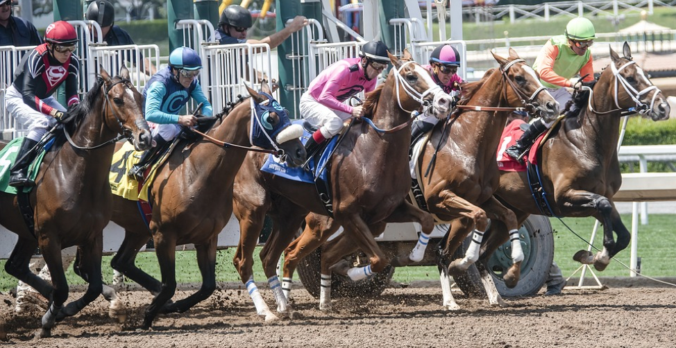 Big 4 Races At The Monmouth Park 2019